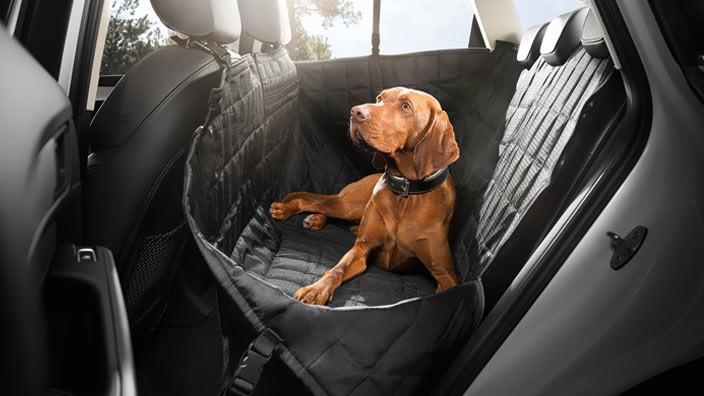 Original Audi Hundeschutzdecke Fondschutzdecke